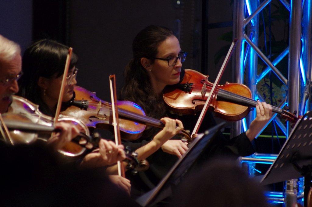 Konzentrierte 1. Geigen