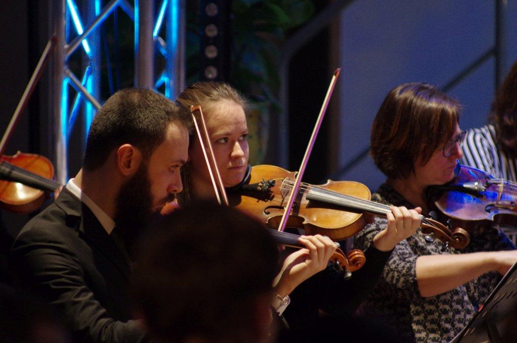 1. Geigen im Einsatz