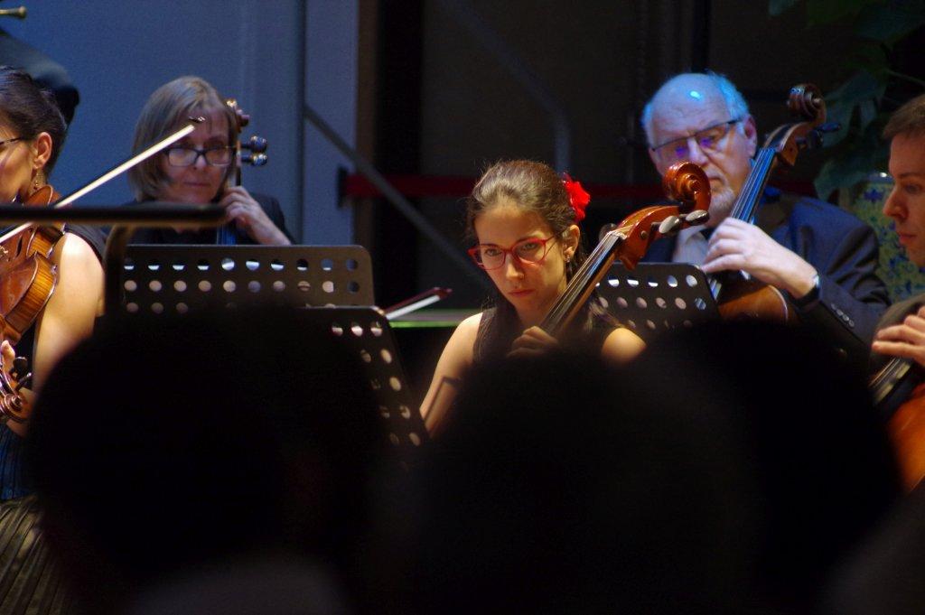 Arianna inmitten der Cellogruppe